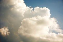 Предпосылка крупного плана облаков Стоковые Изображения RF