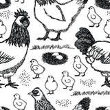 Предпосылка курицы Сассекс птицефермы бесплатная иллюстрация
