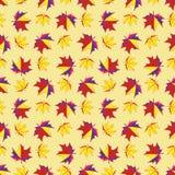 Предпосылка кленовых листов безшовная Стоковые Фотографии RF
