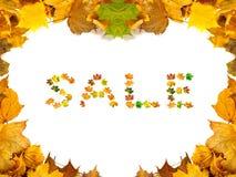 Предпосылка клен-листьев осени с словом ПРОДАЖЕЙ составленной autumna Стоковые Изображения
