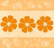 Предпосылка мандарина Стоковые Изображения