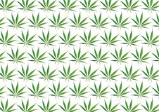 Предпосылка марихуаны Стоковые Фото