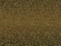 Предпосылка масштаба игуаны Стоковая Фотография RF