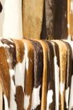 Предпосылка меха коровы Брайна Стоковые Фотографии RF