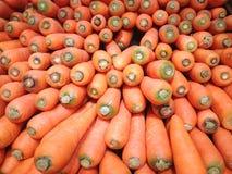 Предпосылка морковей, помещенная на поле для продажи Стоковые Фото