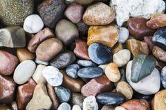 Предпосылка морских камешков Стоковое фото RF