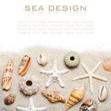 Предпосылка моря Стоковые Фото