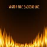 Предпосылка огня или пламени вектора Стоковое Изображение