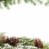 Предпосылка орнамента рождества с ветвями ели Стоковые Изображения RF