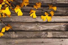Предпосылка осени деревянная Стоковая Фотография RF