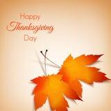 Предпосылка осени на официальный праздник в США в память первых колонистов Массачусетса Яркие листья апельсина Стоковые Изображения RF