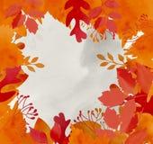 Предпосылка осени с высушенными листьями Стоковое фото RF