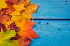 Предпосылка осени с листьями падения Стоковые Изображения RF