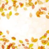 Предпосылка осени с листьями Стоковые Фотографии RF