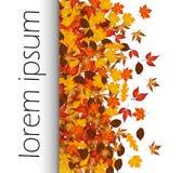 Предпосылка осени с красочными листьями и осенью слова Стоковое Изображение
