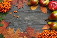 Предпосылка осени с покрашенными листьями на темной деревянной доске Взгляд сверху стоковая фотография