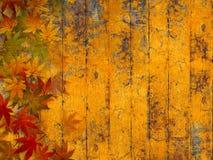 Предпосылка осени Grunge с листьями падения Стоковые Изображения