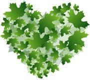 Предпосылка от листьев Стоковое фото RF