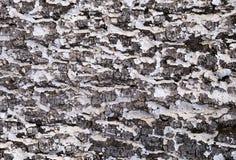 Предпосылка от расшивы старой древесины Стоковая Фотография