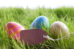 Предпосылка пасхи с красочными пасхальными яйцами и опорожняет ярлык Стоковая Фотография