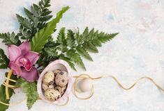 Предпосылка пасхи с яичками, орхидеей и папоротником стоковая фотография