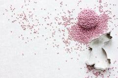Предпосылка пасхи с spri резца и сахара печенья зайчика пасхи Стоковая Фотография RF