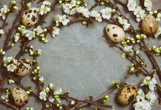 Предпосылка пасхи флористическая Стоковое Изображение RF