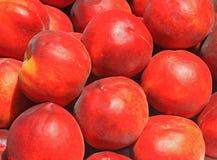 Предпосылка персика Стоковая Фотография RF