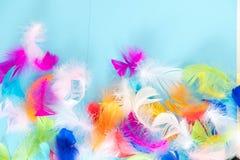 Предпосылка пер абстрактная Предпосылка для дизайна с мягким colorfull оперяется картина Мягкие пушистые пер дальше Стоковые Фотографии RF