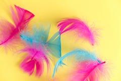 Предпосылка пер абстрактная Предпосылка для дизайна с мягким colorfull оперяется картина Мягкие пушистые пер на бирюзе, дне d стоковые фото