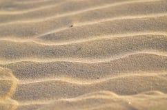 Предпосылка песка пляжа Стоковые Фото