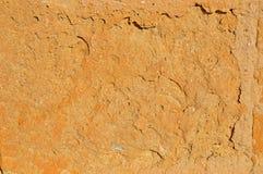 Предпосылка песчаника Стоковые Фотографии RF