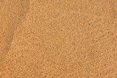 Предпосылка песчаного пляжа и детальная текстура песка Стоковое Фото