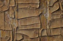 Предпосылка постаретых и выдержанных текстурированных деревянных планок с старой Стоковые Фотографии RF