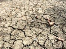 Предпосылка почвы засухи Стоковое Изображение