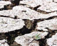 Предпосылка пола земли темы глобального потепления горячая высушенная Стоковое фото RF