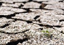 Предпосылка пола земли темы глобального потепления горячая высушенная Стоковые Фото