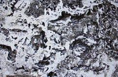 Предпосылка пола цемента Стоковое Изображение RF
