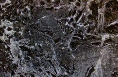 Предпосылка пола цемента Стоковые Фотографии RF