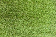 Предпосылка поля травы Стоковые Изображения RF