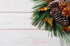 Предпосылка праздника рождества с золотыми украшенными елью и сосной Стоковое фото RF