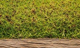Предпосылка предпосылки травы Стоковое фото RF