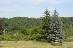 Предпосылка природы, отображает на открытом воздухе Красивый парк сцены парка публично Стоковые Изображения RF