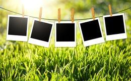 Предпосылка природы с зеленой травой и фото на веревочке Стоковое фото RF
