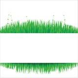 Предпосылка природы с зеленой травой 02 Стоковое Изображение