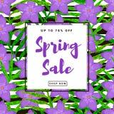 предпосылка продажи весны Безшовная картина от творческого пурпура Стоковое Изображение