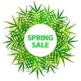 Предпосылка продажи весны красочная Стоковое фото RF