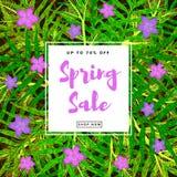 Предпосылка продажи весны красочная Стоковое Фото