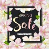 Предпосылка продажи весны с цветками Дизайн знамени скидки сезона с вишневыми цветами и лепестками Стоковые Фото