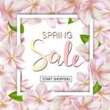 Предпосылка продажи весны с цветками Дизайн знамени скидки сезона с вишневыми цветами и лепестками Стоковые Изображения RF